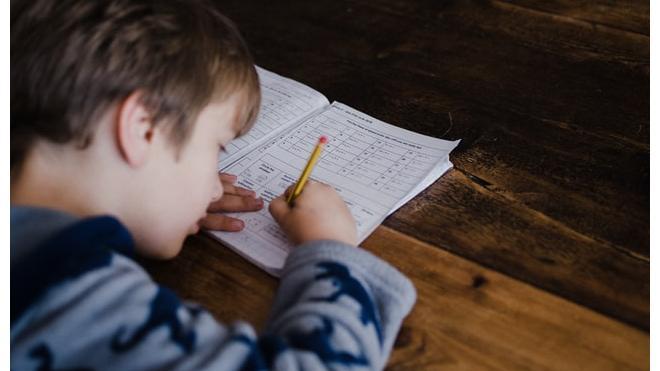 Исследование практики организации домашней учебной работы в общеобразовательных организациях Российской Федерации (2020)